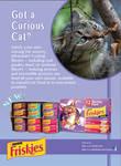 Pet Food Ad