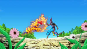 Goku (Super Saiyan God) vs. Beerus