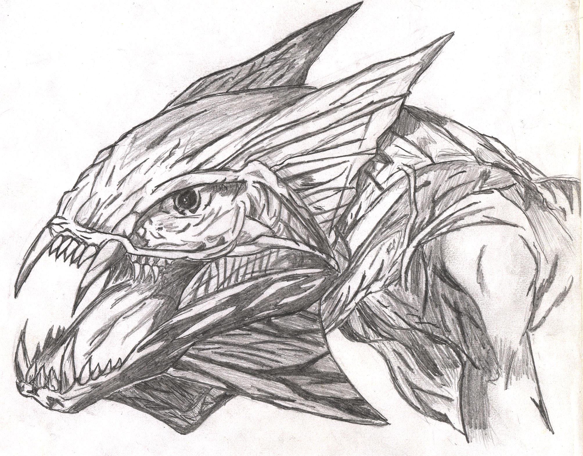 Dragon head sketch by Avantasian on DeviantArt