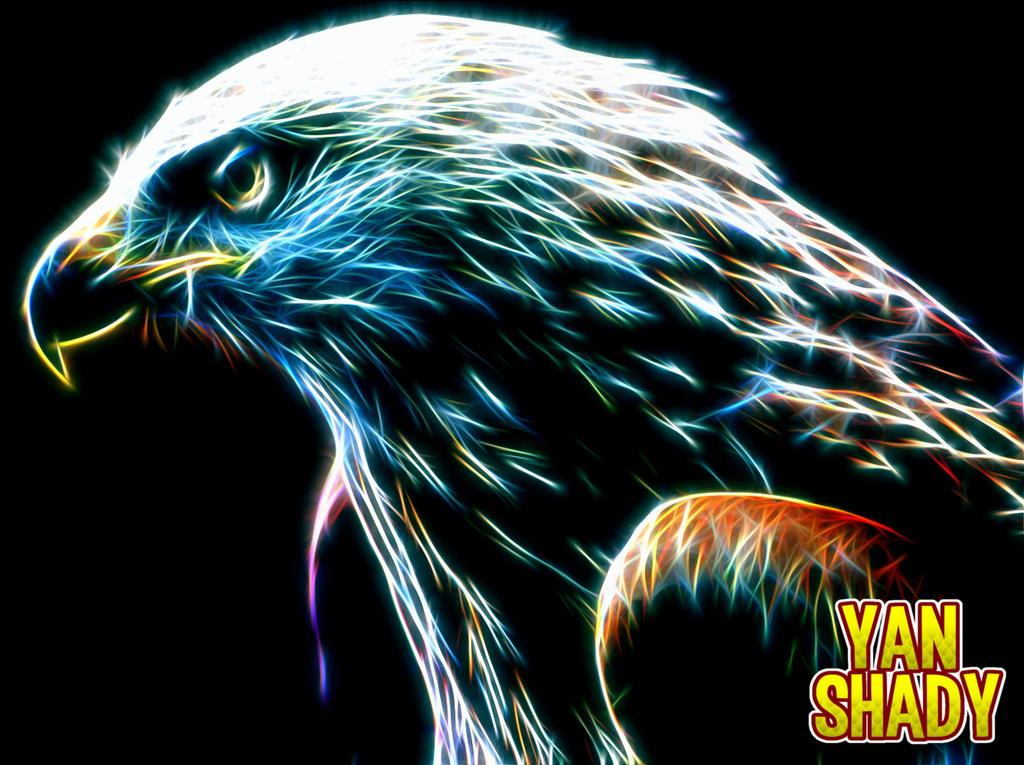 Eagle by YanShady