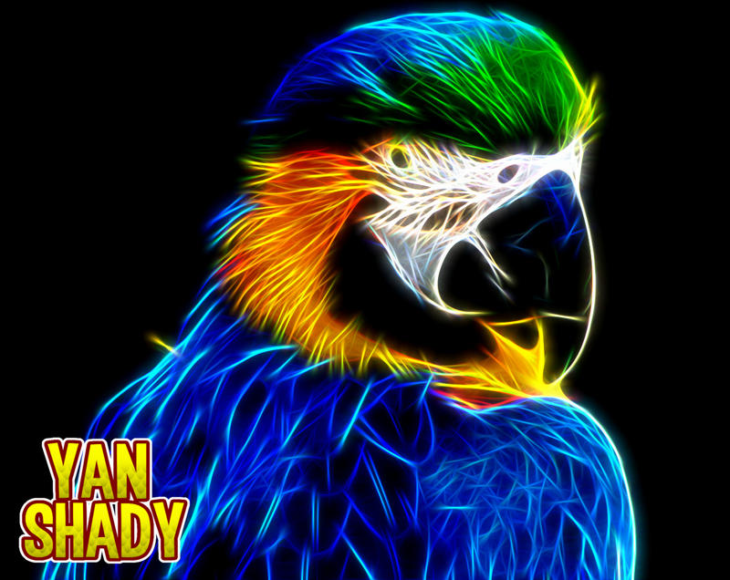 Another Parrot by YanShady