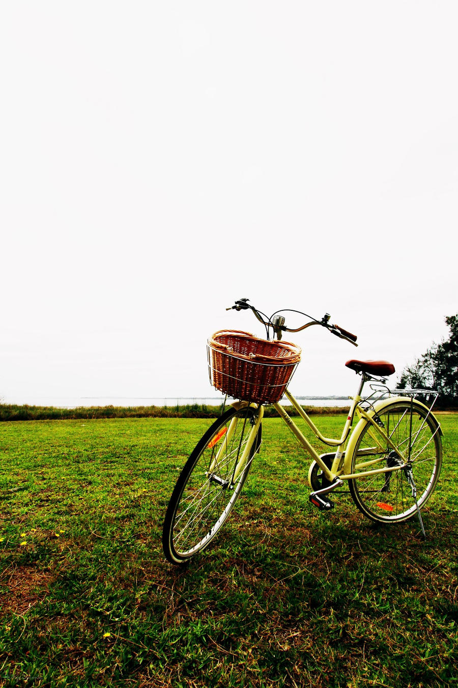 Bicycle by kaitlynslocombe