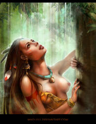 Pocahontas by mad-jill