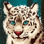 Snow Leopard .:Weekly Drawing Challenge:.