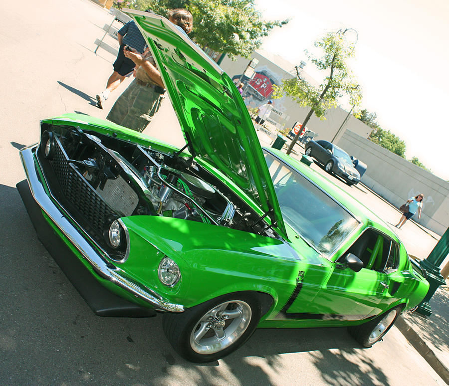 BOSS 351 by StallionDesigns