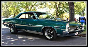 1 Fine GTO