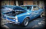 GTO Blue's