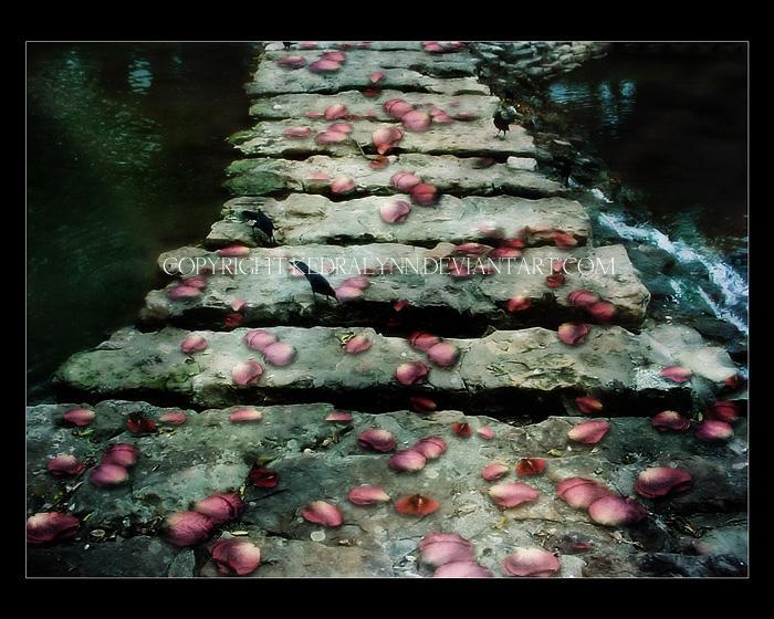 A Path to Walk by kedralynn