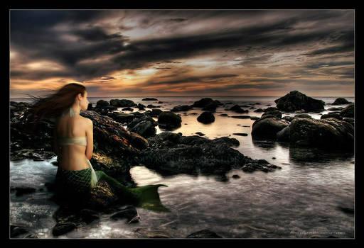 Her Secret Cove 2