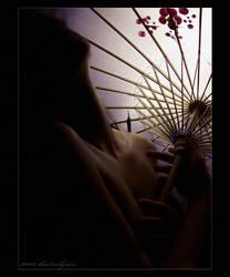Soft Light by kedralynn
