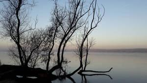 ein kuehler Wintermorgen 02