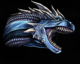 Dragon by MillaMeh