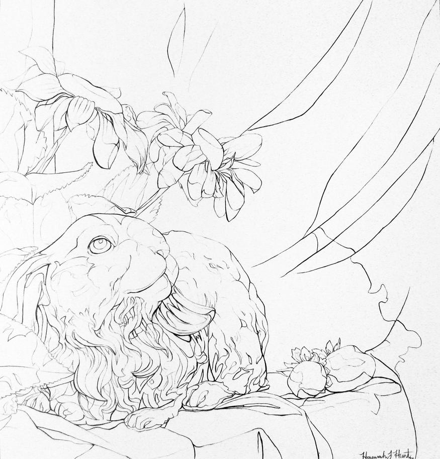 Contour Line Drawing Of Still Life : Contour line still life by coldairbloon on deviantart