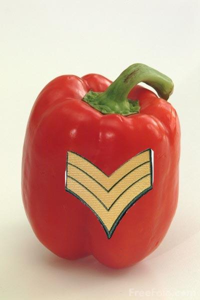 Sgt. Pepper by SergeantKilrain