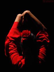 Flamenco II by aniram67