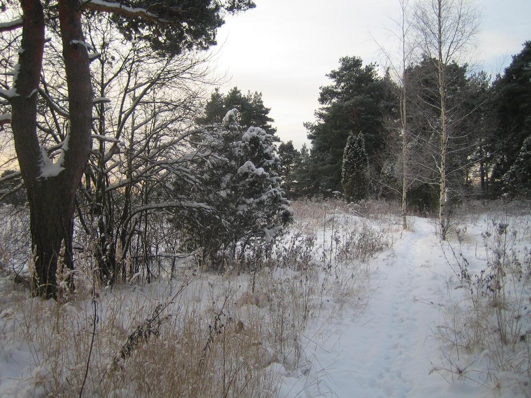 Snowy landscape 3 by Temansha