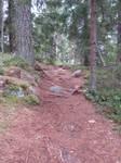 Path 35