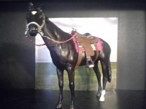 DeBruin Saddlery5