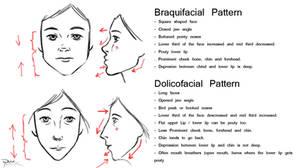 Facial Patterns