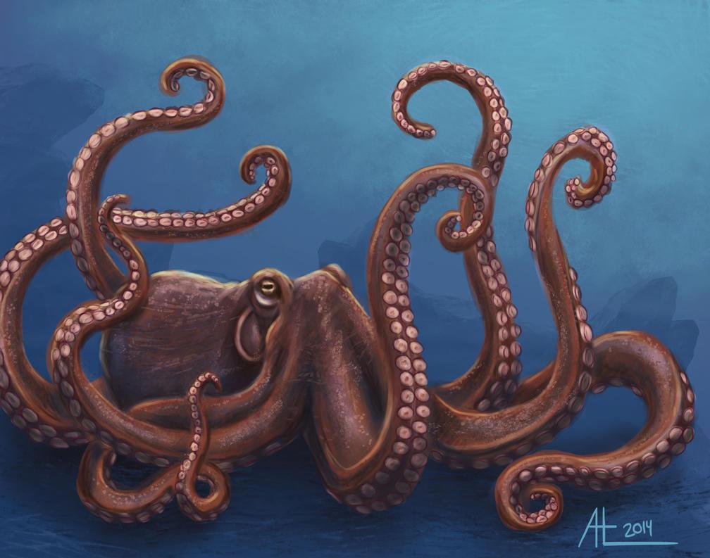 Octopus by bugsandbears
