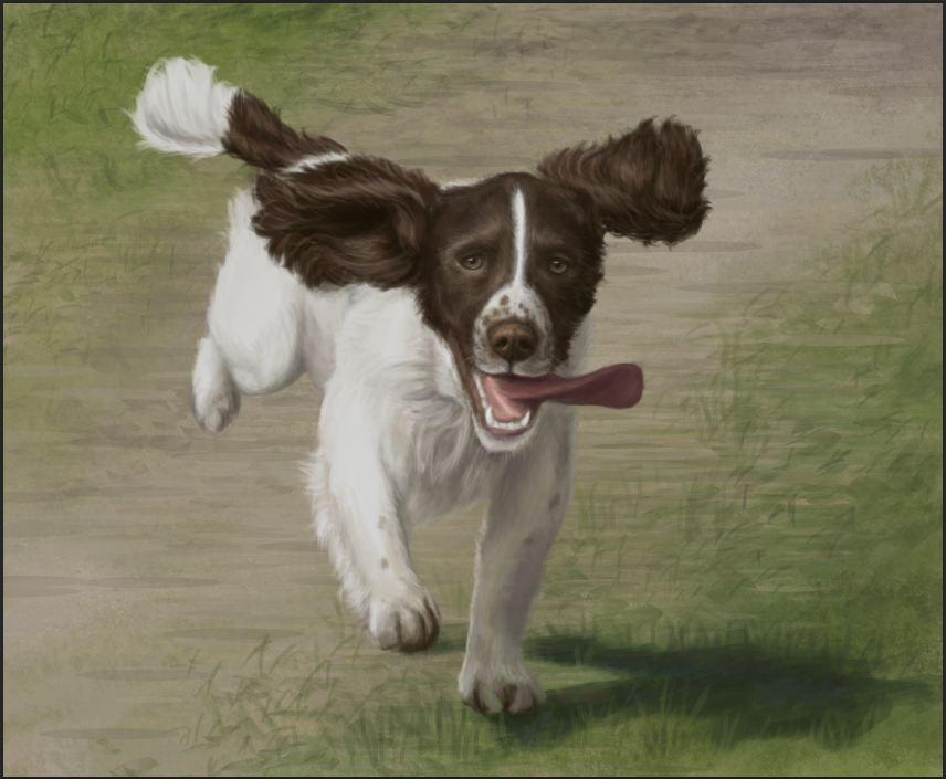 Running Dog by bugsandbears