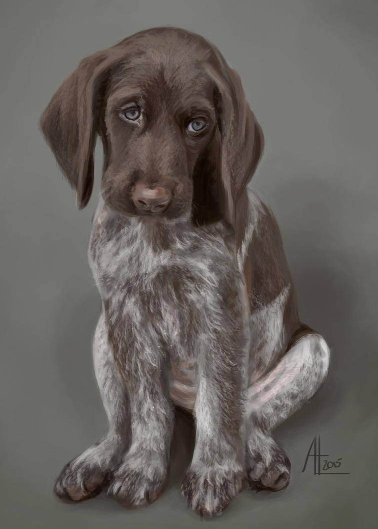 Pointer Puppy by bugsandbears