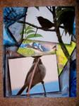 Bird Collage by Yggdrassal