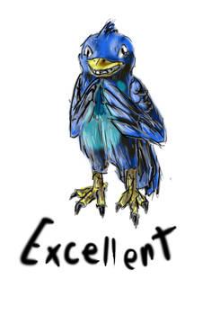 Excellent Bird