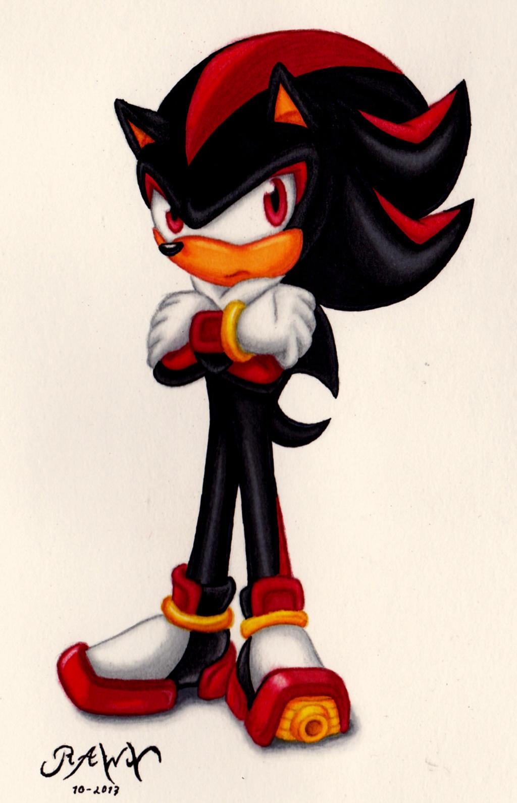 Shadow The Hedgehog by RAWN89