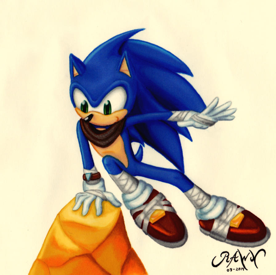 :Gift: Sonic SB by RAWN89