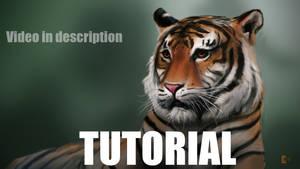 Tiger Painting Tutorial