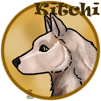 Kitchi coin by MountainRidge-Kennel