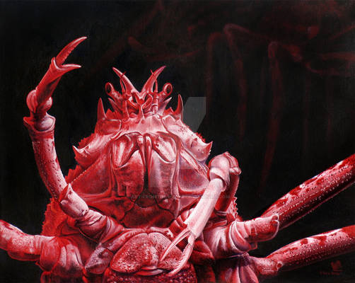 Crustacean Salutation