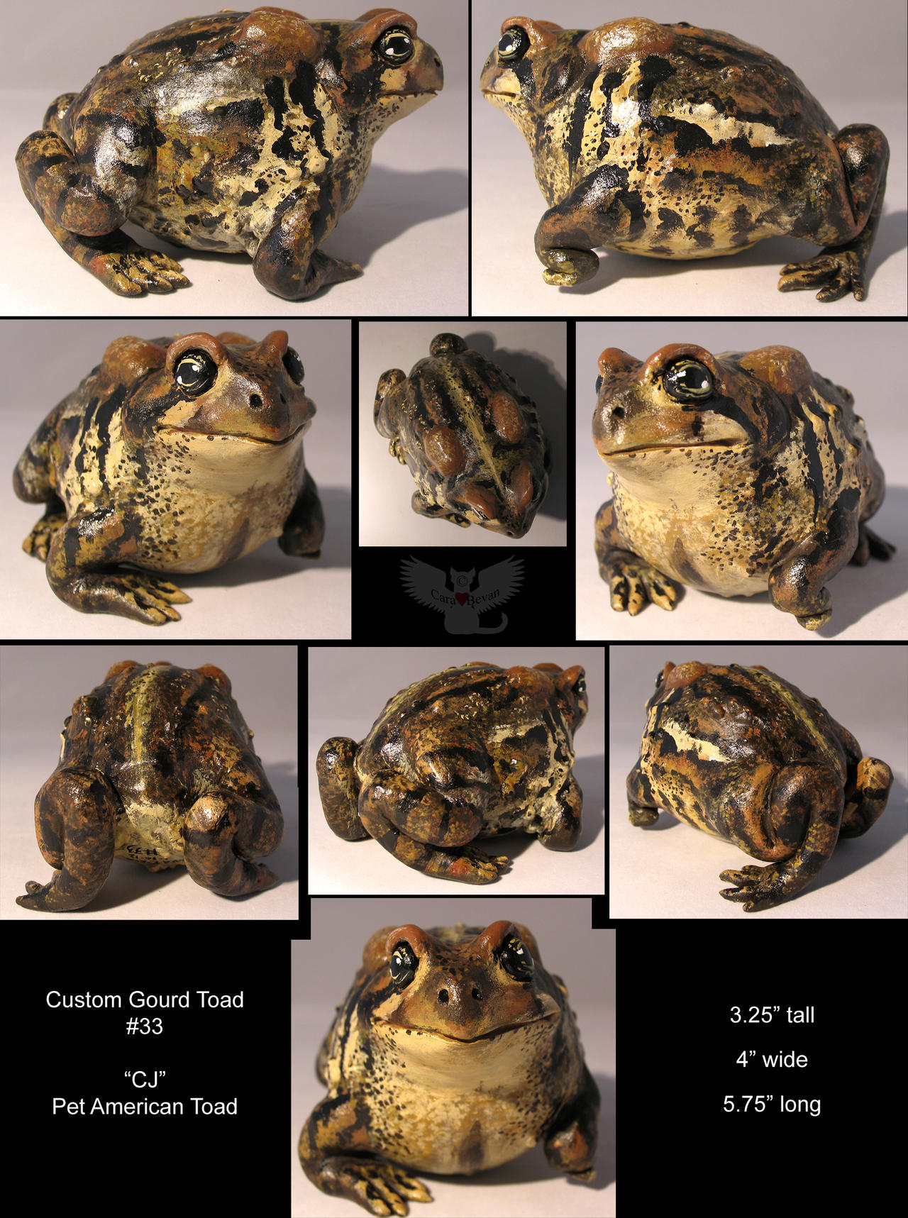 Gourd Toad 33_ Fat CJ by ART-fromthe-HEART