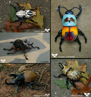 Realistic Gourd Sculpted Beetles by ART-fromthe-HEART