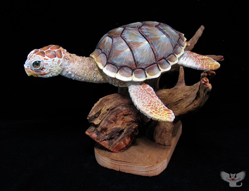 Gourd Loggerhead Sea Turtle by ART-fromthe-HEART