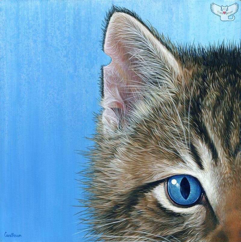 Peeping Kitten by ART-fromthe-HEART