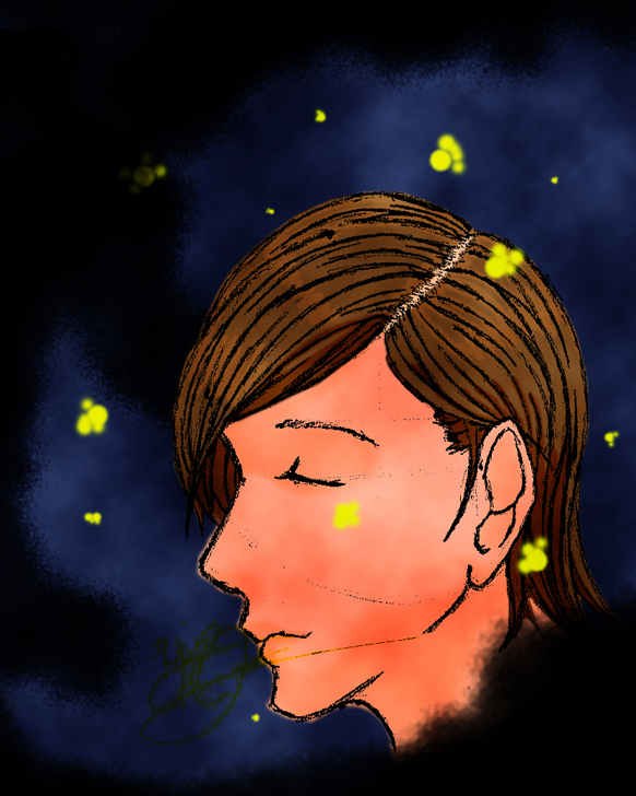 Fireflies by AuthorT