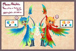 Macaw Adoptables