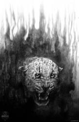 Black Days 01, Jaguar