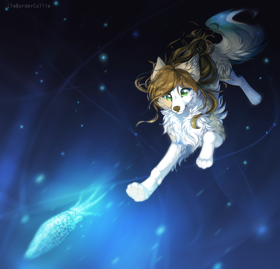 Swimming with the fireflies by LiaBorderCollie