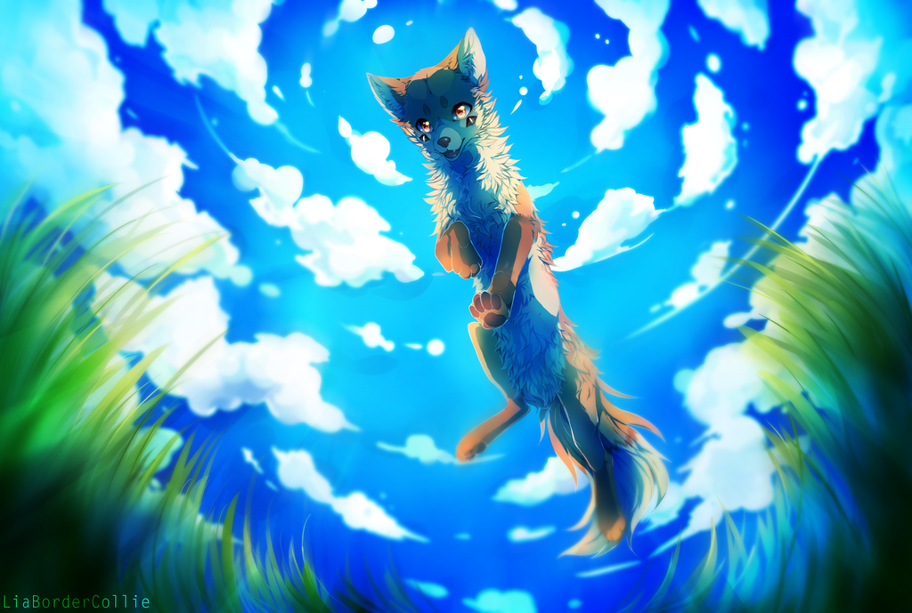 Jump above the world by LiaBorderCollie