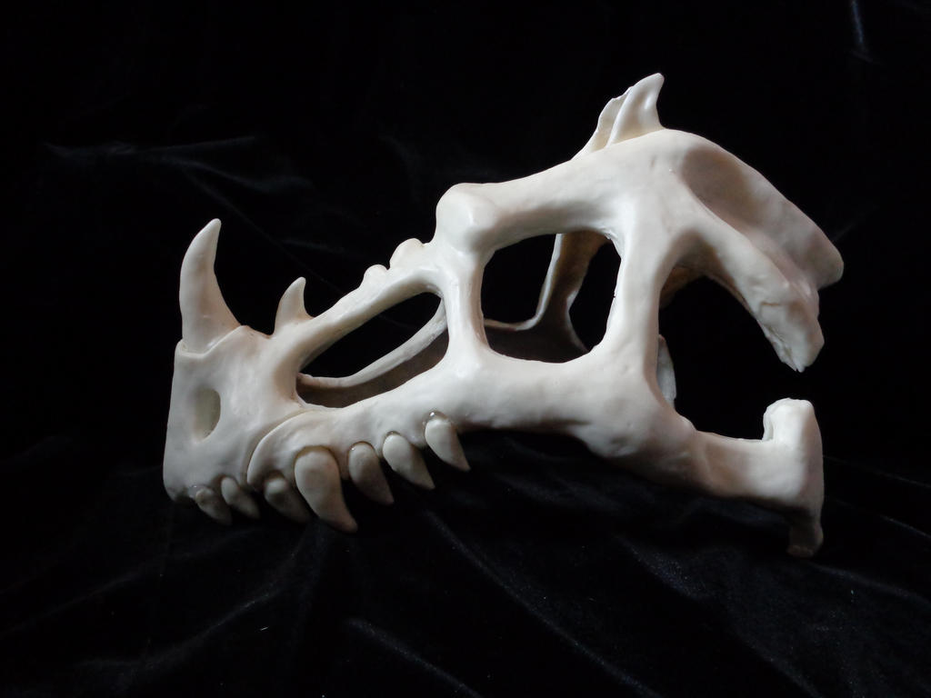 Dragon Skull I by OtherworldCreatures