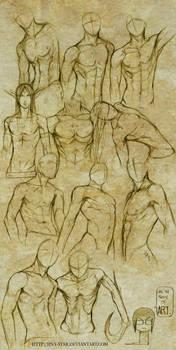 +MALE BODY STUDY I+