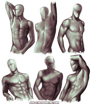 + MALE BODY STUDY: SEXUAL OFFENDERMEN +