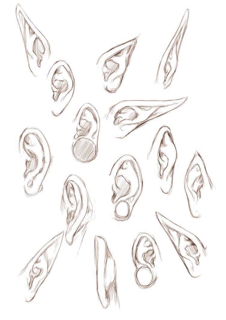 Ears By Jinx Star On Deviantart