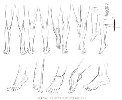 +LEGS AND FEET STUDY+