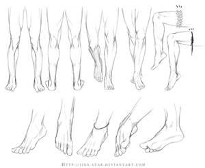 +LEGS AND FEET STUDY+