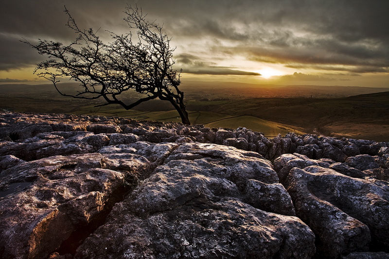 Weathering Heights by Caravela