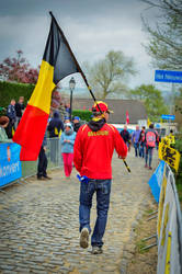 Ronde Van Vlaanderen 2014 #1